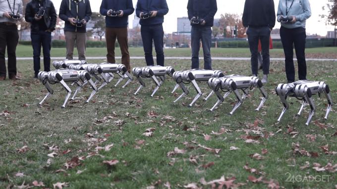 Собакоподобные роботы Mini Cheetah вышли на прогулку в парк (видео)