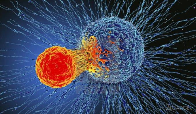 Британские ученые тестируют эффективный способ лечения онкологических заболеваний
