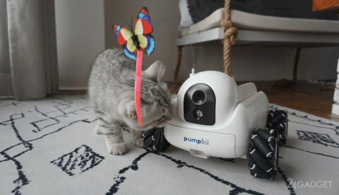 Робот Xiaomi Pumpkii для развлечения домашних животных (4 фото)
