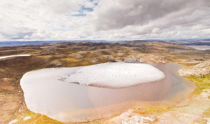 В Гренландии с глубины 1,4 км подняли остатки окаменелого древнего дерева (видео)