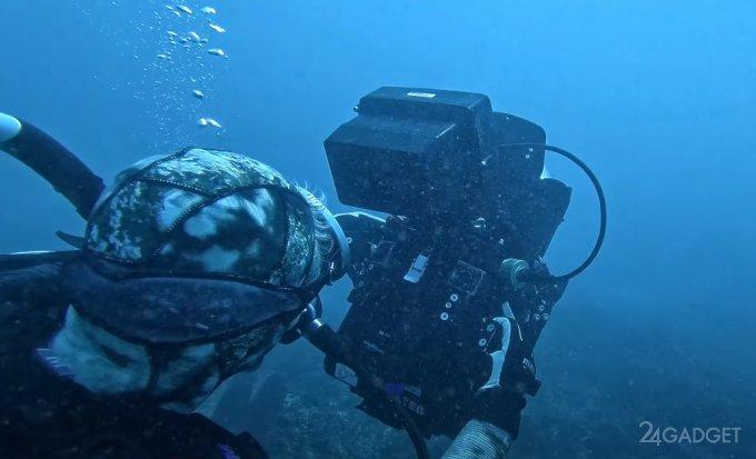Samsung Galaxy S21 Ultra использовали для профессиональной подводной съемки (видео)