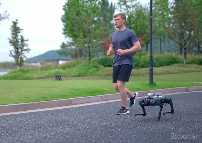 Китайский собакообразный робот Unitree Go1 следит за владельцем и подносит ему воду (видео)