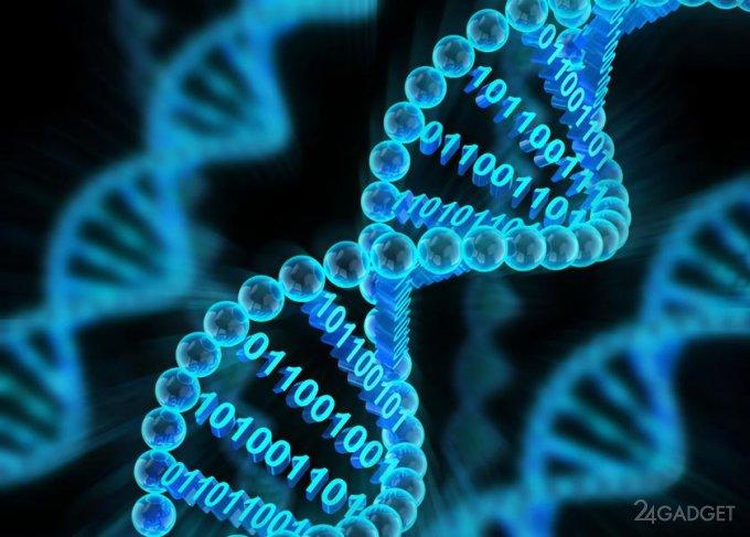 Разработан прототип процессора на базе ДНК